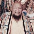 His Eminence Drubwang Gangchen Rinpoche